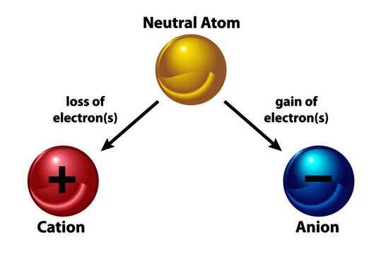 Cations and Anions. A neutral atom becomes an ion by either losing and electron (cation) or gaining an electron (anion)