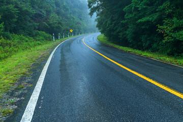 View asphalt road in the rainforest