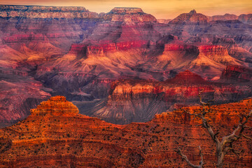 Tuinposter Rood paars Grand Canyon National Park, Arizona