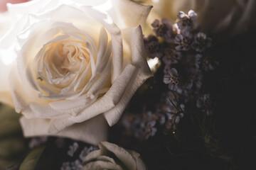 Fototapeta Close up of bridal bouquet