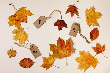 Autumn sale concept. Cardboard labels with percents, variety of yellow autumn leaves over beige background. Flat lay.