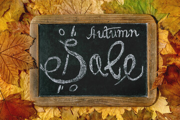 Autumn sale concept. Vintage chalkboard with hand written lettering Sale over variety of colorful autumn leaves. Flat lay.