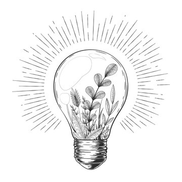 Vector vintage illustration with hand drawn light bulb, plants, herbs, branches and floral elements inside isolated on white background