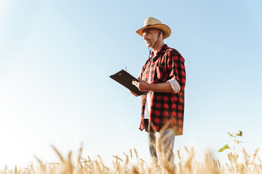 Image of unshaven adult man looking aside while standing at cereal field