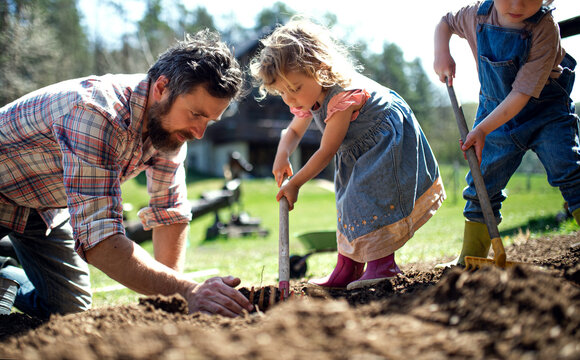 Father with small children working outdoors in garden, sustainable lifestyle concept.