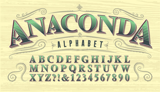 Anaconda Font. Antique Style Vintage Alphabet. Old West or Circus Style of Lettering for Saloons, Gambling, Card Games, Poker, etc.