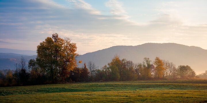 misty morning of mountainous countryside. rural landscape in autumn colors. trees on the fields in fall colors. distant mountains beneath a sky with clouds in morning light