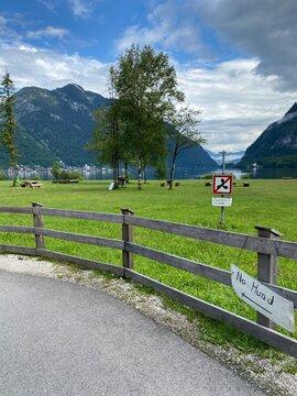 Dorf Hallstadt in Österreich im sommer am see