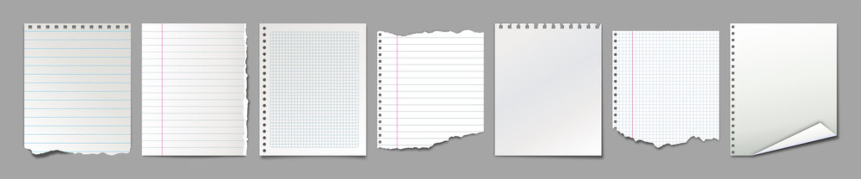 Set of different blank notebook torn pages. Pieces of ripped paper for notes. Vector illustration
