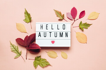 Hello autumn lightbox and colorful leaves on pastel background