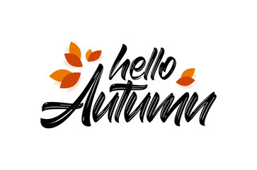 Vector handwritten type lettering of Hello Autumn with fall leaves.