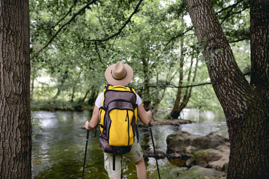young man doing a hiking trail with his yellow backpack and hat on his head by a lake with many trees and natural areas looking at the landscape