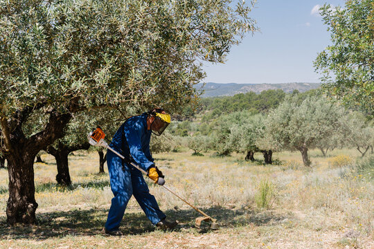 Male worker in protective helmet and uniform mowing grass with brush cutter on sunny day on background of amazing landscape