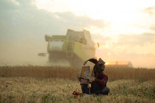 Sorcerer sits near doll among wheat field and performs a magic ritual holding old toy car in his hands.