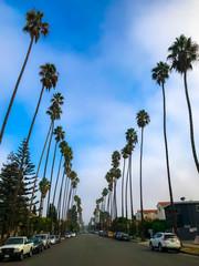Wall Murals Los Angeles Cali