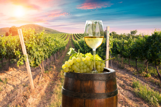 A fresh chilled glass of ice wine overlooking a Canadian vineyard during a Summer sunset