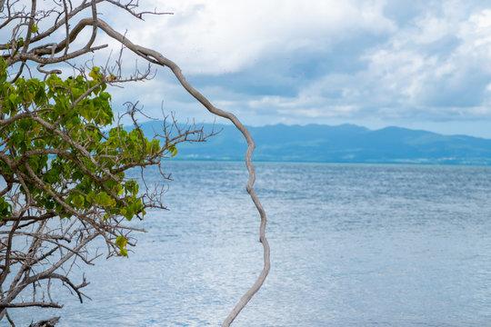 Île et horizon