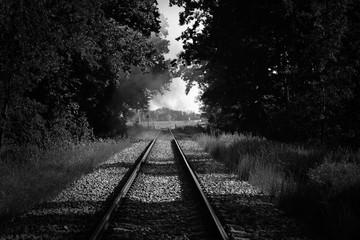 railroad tracks among the forest with smoke