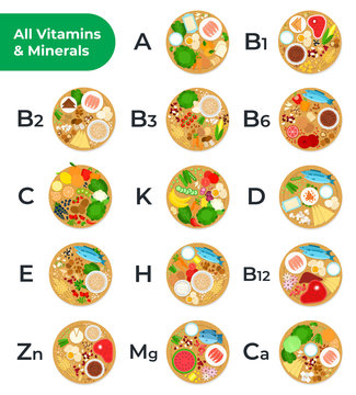 Table of all vitamins and minerals, foods containing them vector icon flat isolated illustration