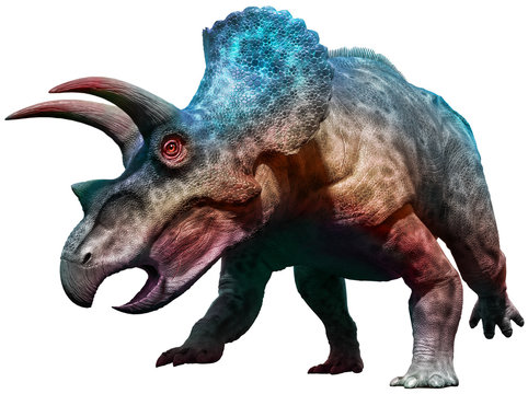 Triceratops dinosaur charging 3D illustration