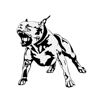 American Pit Bull Svg, Terrier Svg Files For Cricut, Dog Dxf Cut File, Puppy Vector, Eps, Png, Ipg, Friend, Pet, Picture Pitbull