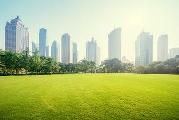 Fototapete - park in lujiazui financial centre, Shanghai, China