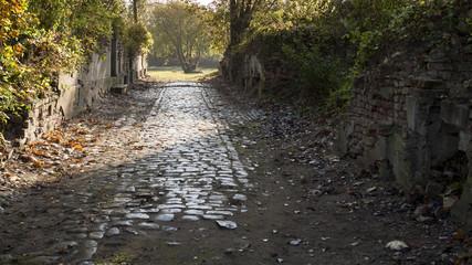 Fototapeta odgruzowany i odkopany fragment starej brukowanej uliczki - stare miasto Kostrzyn obraz