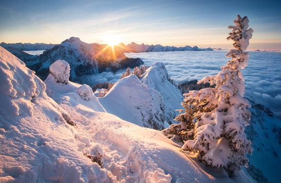 verschneite Winterlandschaft in den bayrischen Alpen