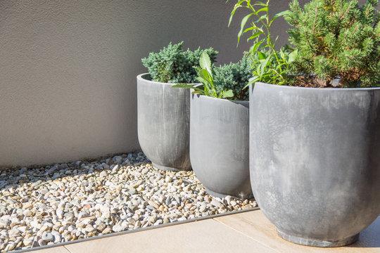 Moderne Garten und Terrassengestaltung: Graue Steinkübel mit Kräutern, Kiefern und Zierhölzern bepflanzt und auf Kies und Natursteinpflaster stehend vor einer Balkon