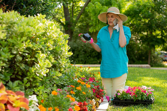 Senior Caucasian woman gardening in her yard, planting flowers in front of house and calling her doctor about her seasonal allergies