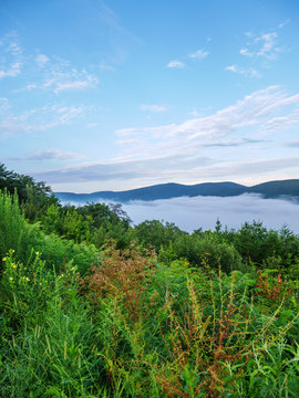 fog in the valley below a scenic overlook along the skyway motorway in the talladega national forest, alabama, usa