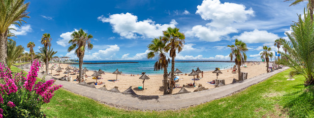 Wall Mural - Landscape with Camison beach at Tenerife, Canary islands
