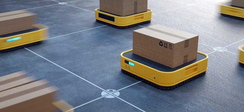 Automated logistics center. Robotized order picking.