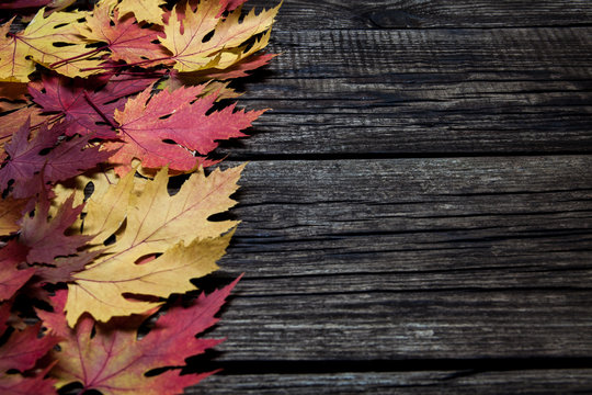 Autumn leaves on wooden background with copy spase