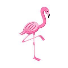 Cartoon flamingo standing on one leg position - cute exotic pink bird