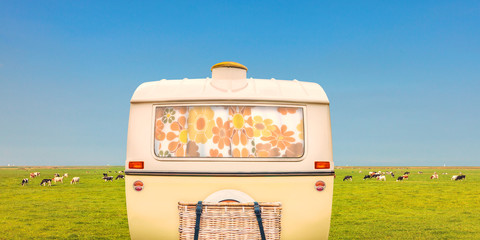 Vintage rear of a caravan in front of a landscape with milk cows in the Dutch province of Friesland in summer