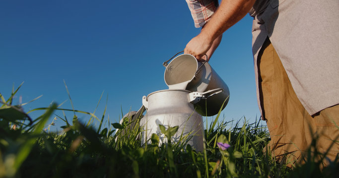 The milkman pours milk into the can against the background of a green meadow