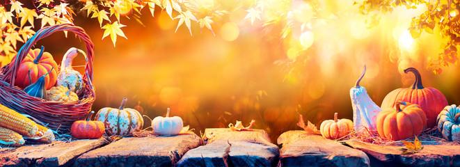 Harvest - Pumpkins And Corncobs On Wooden Table In Autumn Garden