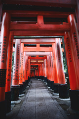 Kyoto/Japan - 2016 Nov 22 : Red torii pillars at Fushimi inari shrine. In the morning, the atmosphere was quiet and there were not many tourists. Vintage style pictures