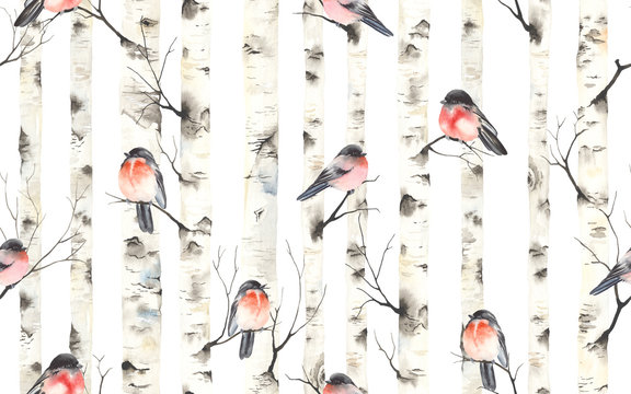 Birch trees with bullfinches birds on branches, watercolor seamless pattern. Forest illustration of stems, nature template, Christmas background.
