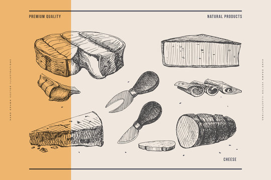 Hand-drawn hard and soft cheeses on light background. Camembert, smoked cheese, brie, and cheese knives. Retro image for menu of restaurants, markets, shops. Vector illustration in style of engraving.