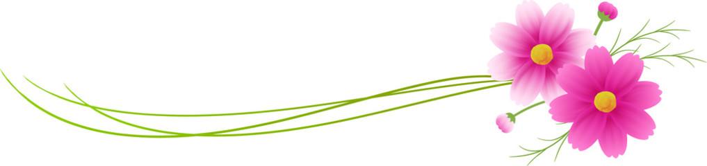 ピンクのグラデーションのコスモスの装飾付きの、水彩絵の具のライン、バナー、コピースペース