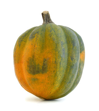 Studio close up of acorn squash isolated on white background with light shadow