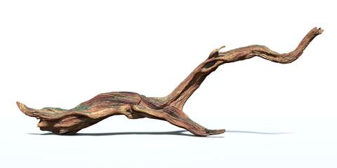 Fototapeta driftwood isolated on white background, aged wood obraz