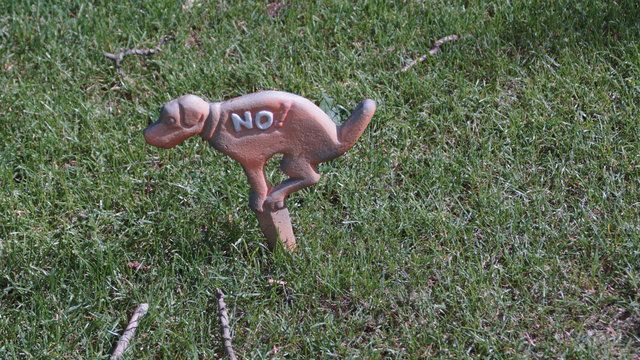 Warnhinweis: Keine Hundetoilette auf der Wiese