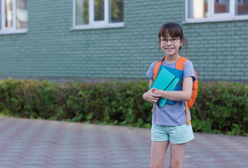 Portrait of happy schoolgirl with backpack and notebooks isolated on a school yard