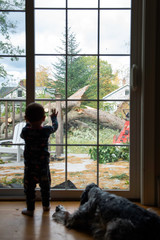 Toddler and Dog Watch Tree Workers Outside the Window