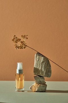 Concept of wellness and natural cosmetics