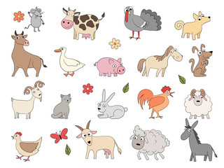 Domestic animals. Cute funny farm horse pig chicken duck bool and sheep vector coloring drawing set. Domestic pig and goat, horse and chicken illustration
