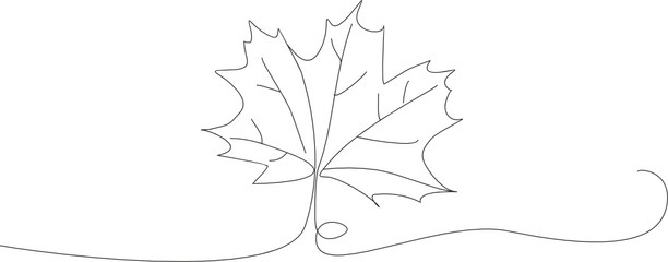 Fototapeta autumn maple leaf lineart obraz